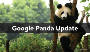 Google Panda Update: Google Raises the Bar on Content Quality
